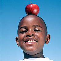 Alimentos para escolas